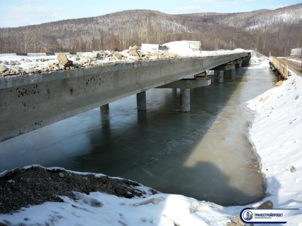 Общий вид моста в Амурской обл.